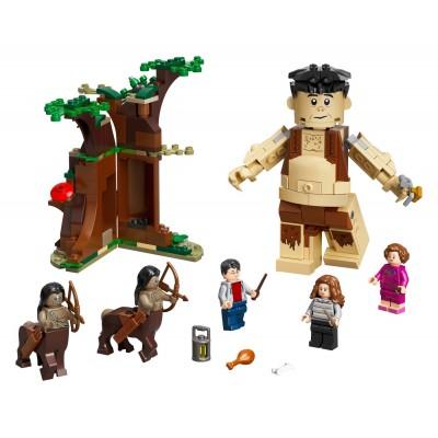 LEGO Harry Potter 75967 Zakázaný les: Stretnutie Grawpa s profesorkou Umbridgeovou