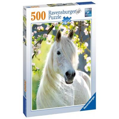 Ravensburger Kobyla 500
